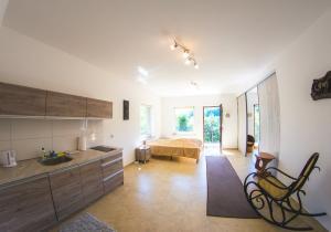 Apartament w Szczawnicy (3)